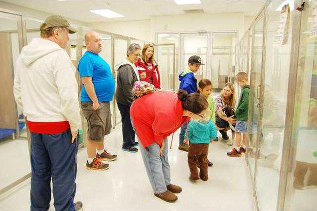 New Shelter 3 - Willson Family